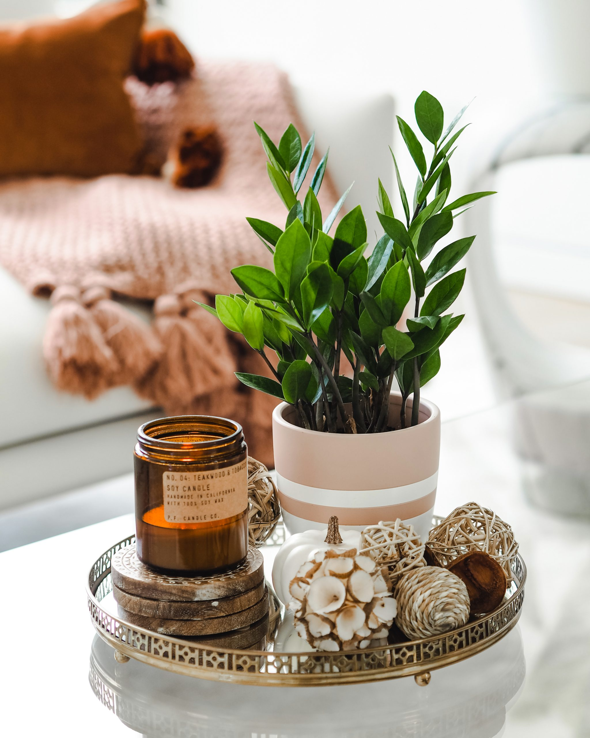 Image portrays a cozy setting with a plant, candle and decorating accessories on a copy table and blanket on a couch in the background.